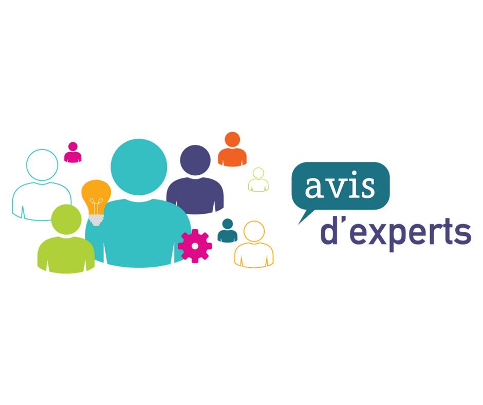 Logo de l'Avis d'expert