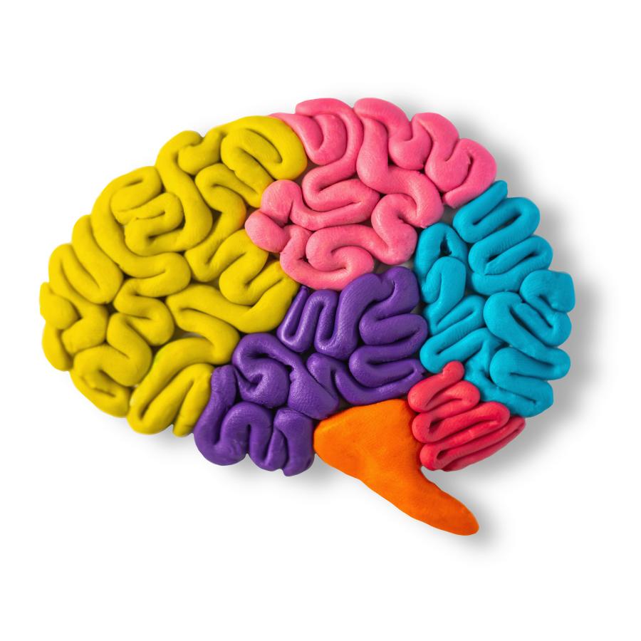 Enregistrement de webinaire :  Les compétences de la gestion de l'attention, de l'impulsivité et de l'anxiété